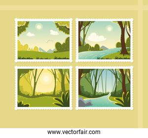 set of different forest