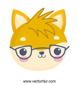 cat with glasses face