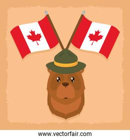 bear with canada flags