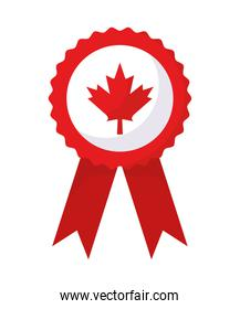 canada day medal