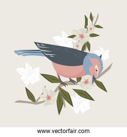 pink bird and flowers