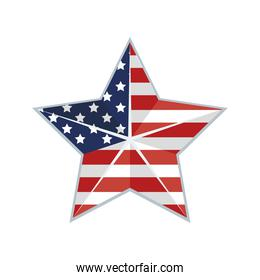 usa flag in star
