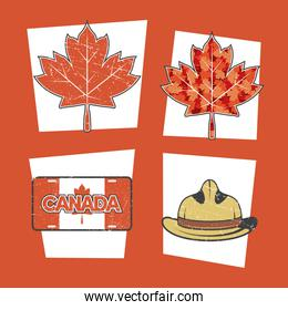 four canada day items