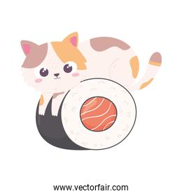 kitty and sushi food
