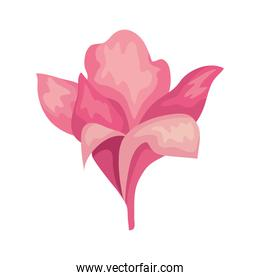 painted pink flower