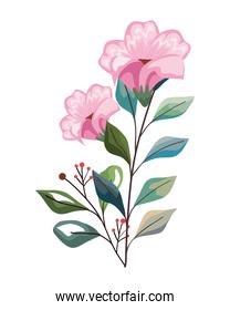 pink flowers with leaves