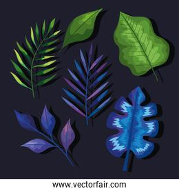 leaves icon group