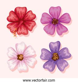 flowers symbol collection