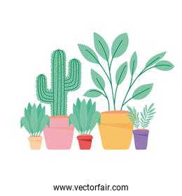 green plants group
