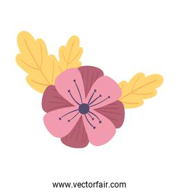 pink flower and leaves