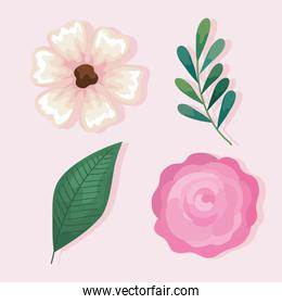 pink flowers with leaves set