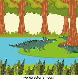 alligators lake and forest