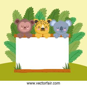 cute animals with blank signboard