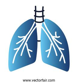 healthy lungs breathing