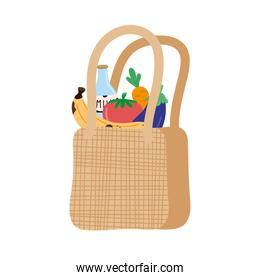 ecology bag with groceries