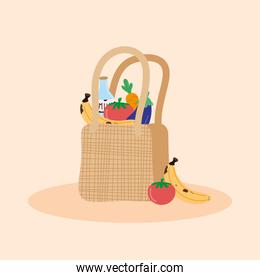 groceries in ecology bag