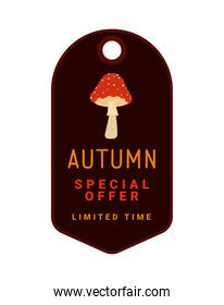autumn special offer tag