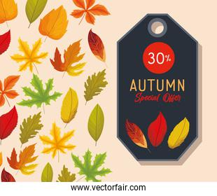 autumn special offer label