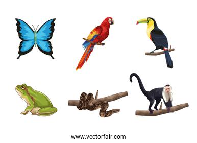 Cute and realistic jungle animals