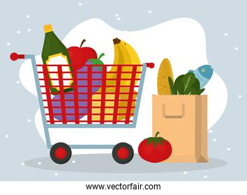 Grocery shopping and bag with food